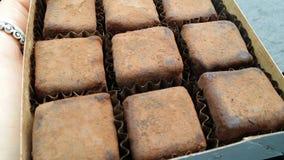 Box of vegan truffles Bojo Bojo. Organic. Bio. Cacao truffles. England royalty free stock images