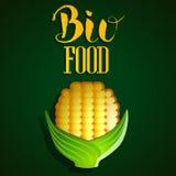 Organic, bio, ecology natural logotypes elements set. Stock Photography