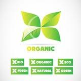 Organic bio product leaf logo Stock Image