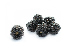 Organic blackberries. Blackberries  on white background Royalty Free Stock Photos