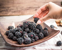 Organic blackberries in a glass on a wooden plate, rustic. Clean Royalty Free Stock Photos