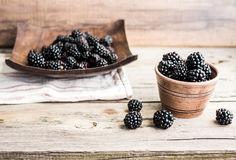 Organic blackberries  in pottery on a gray wooden board. Organic blackberries in pottery on a gray wooden board, rustic Royalty Free Stock Image