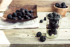 Organic blackberries  in pottery on a gray wooden board. Organic blackberries in pottery on a gray wooden board, rustic Royalty Free Stock Photography