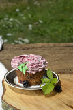 Organic blackberry fruit cupcake Stock Photography