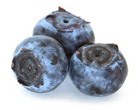 Organic blueberries Royalty Free Stock Photos
