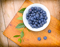 Organic blueberries in bowl Royalty Free Stock Image