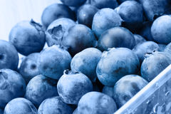 Organic blueberries in food container - close up studio shot Stock Photos