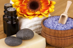 Organic body care products Royalty Free Stock Photography
