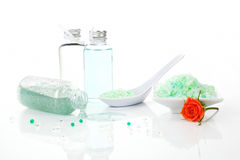 Organic body care set isolated. Royalty Free Stock Images