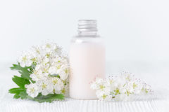 Organic body lotion and fresh flowers Stock Image