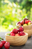 Organic Brazilian Acerola Fruit small cherry. Royalty Free Stock Image