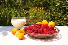 Organic breakfast in the garden. Summer organic breakfast: a glass of milk, a plate of raspberries, apricots on white tablecloth in the garden Royalty Free Stock Photos