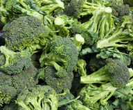 Organic Broccoli royalty free stock photography