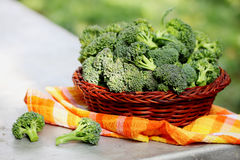 Organic broccoli in a basket Royalty Free Stock Photo
