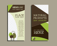 Organic Brochure Template Stock Photography