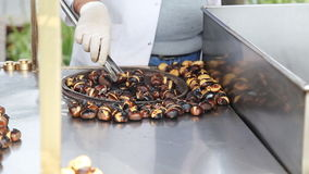 Organic Brown Chestnuts Roasting over a hot fire stock footage