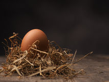 Organic brown egg. In a nest on a wooden background royalty free stock photo