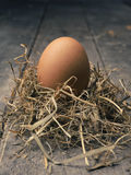 Organic brown egg. In a nest on a wooden background, vintage color toned stock photography