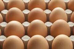 Organic brown eggs in carton crate Royalty Free Stock Images