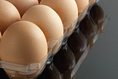 Organic brown eggs in tray Stock Photography