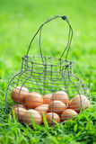 Organic brown eggs in vintage basket Stock Photos