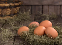 Organic Brown Eggs Stock Photos