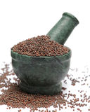 Organic Brown Mustard & x28;Brassica juncea& x29; on marble pestle. Stock Photography