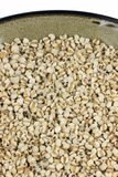 Organic brown rice Stock Image