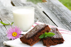 Organic brownie and milk Stock Photography