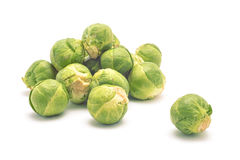 Organic brussel cabbage Royalty Free Stock Photography