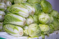 Organic cabbage for sale in local market Royalty Free Stock Image