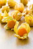Organic Cape Gooseberries Stock Image