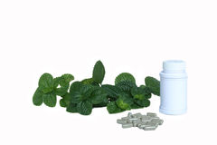 Organic capsule with mint leaves Royalty Free Stock Image
