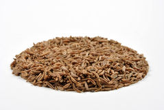 organic caraway seed and a bright background Stock Photography