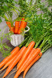 Organic carrot Stock Images