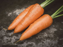 Organic carrots. Bunch of some organic carrots Royalty Free Stock Photos