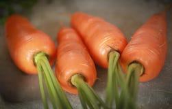 Organic carrots. Closeup of some fresh and organic carrots stock image