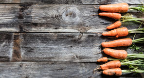 Organic carrots with dirt for authentic, genuine gardening or menu Stock Photos