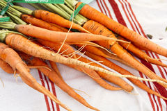 Organic Carrots Stock Images