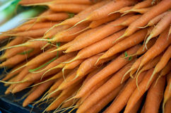 Organic Carrots. Fresh carrots for sale at the local market royalty free stock photo