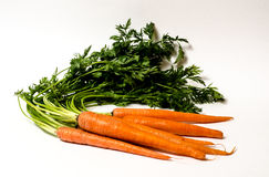 Organic Carrots with greens. Stock Image