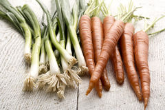 Organic Carrots and Leaks Stock Images
