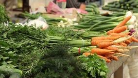 Organic Carrots at Market stock footage