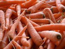 Organic carrots in market Royalty Free Stock Image
