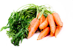 Organic carrots with stems. Fresh organic carrots with stems isloated on white royalty free stock photography