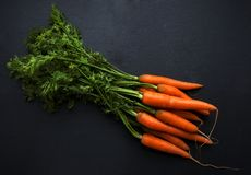 Organic Carrots with stems and leaf royalty free stock image