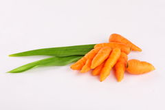 Organic carrots in white background,, Royalty Free Stock Photos