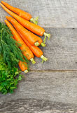 Organic carrots on a wooden background Stock Photography