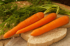 Organic carrots on a wooden surface, farm food,GMO free. royalty free stock images