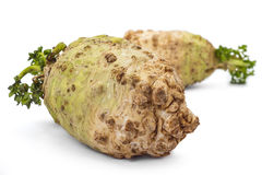 Organic celery roots. Two fresh organic celery roots with leaves on a white background Royalty Free Stock Photos